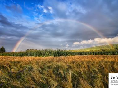 Arc-en-ciel… vive la campagne