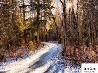 Le sentier et la neige