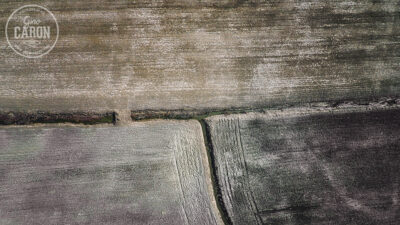 DIfférentes teintes de brun