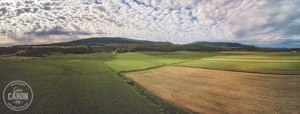 Panorama rural