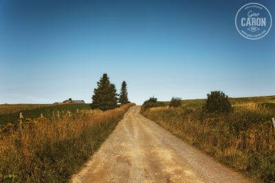 Petite route de campagne et éclairage du matin