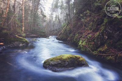 Le ruisseau...