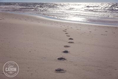 Le sable chaud des Iles